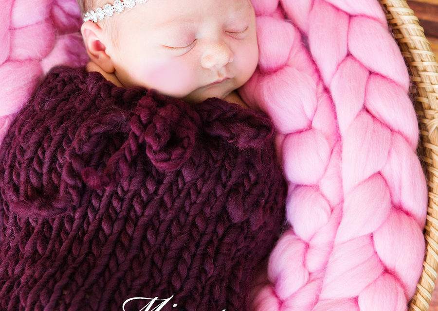 Welcome Lovely Lyla – St. Catharines Newborn Photographer
