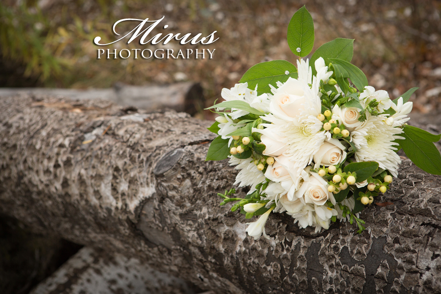 St. Catharines Wedding Photographers